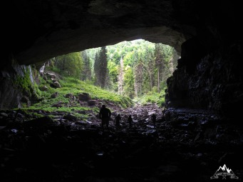 sub maretul portal