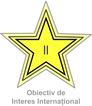 steluta II
