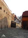 ziduri si istorie