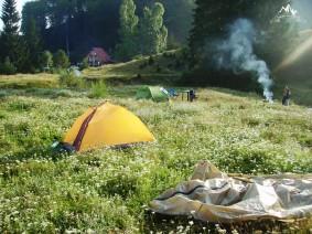 dimineata in cort